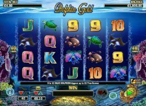 dolphin gold screenshot