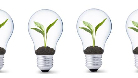 light tree bulbs