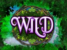 Pixies of the Forest IGT Slot - Wilds