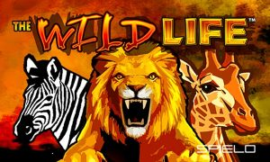 The Wild Life IGT